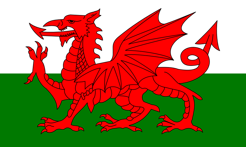 Wales Flag Soccer UEFA Euros world cup